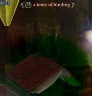 Tome of binding