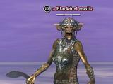 A Blackfurl medic