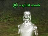 A spirit monk