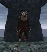 The Skinchanter