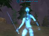 An Untamed Soul