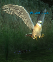 A cliffdiver hawk