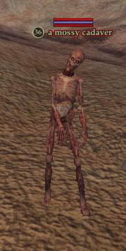 A mossy cadaver