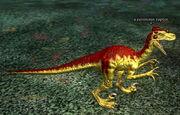 A ravenous raptor