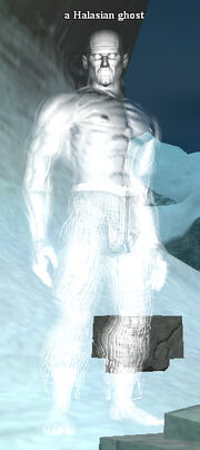 A Halasian ghost