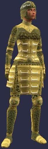 Elder's Armor (female)