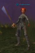 A highwayman (Antonica) (half elf)