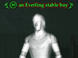 An Everling stable boy