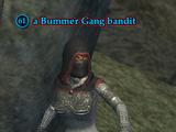 A Bummer Gang bandit
