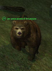 An unseasoned briarpaw