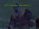 A Kromise Virh sentry