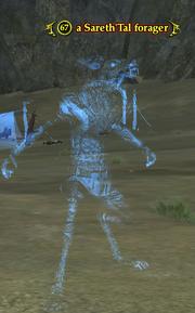 A Sareth'Tal forager