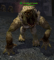 A Frothbark lunatic