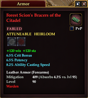 Forest Scion's Bracers of the Citadel