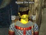 Revliss Dru'shyv