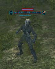 An Ebon Mask assassin