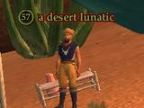 A desert lunatic (Pillars of Flame)
