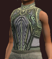 Naturewalker's Tunic of the Forestspeaker (Equipped)