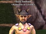 Terit Tonhoof