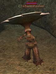 A Zygomyd overseer