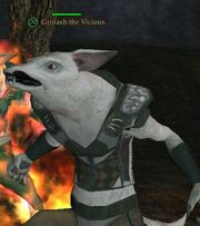 Grinash the Vicious