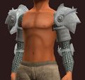 Acolyte's Wrought Plate Pauldrons (Equipped).png