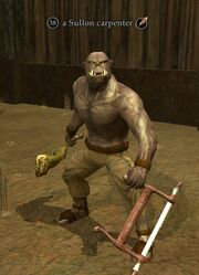 A Sullon carpenter