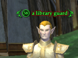 A library guard