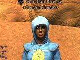Merchant Breeze