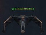 A frenzied bloodbat