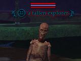 A fallen explorer (Fallen Gate)