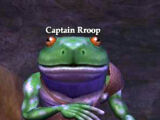 Captain Rroop