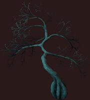 Dead Vesspyr Willow (Placed)