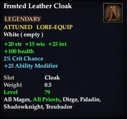Frosted Leather Cloak