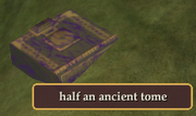 Half an ancient tome