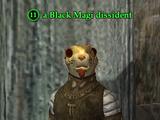 A Black Magi dissident