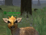 A thicket deer