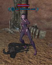 An Adherant seer