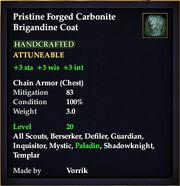Carbonite Brigandine Coat