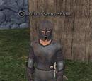 Outland Sentry Shadan