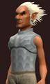Acolyte's Wrought Plate Cuirass (Equipped).png