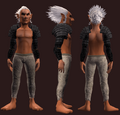 Animist's Spaulders of the Citadel (Equipped).png
