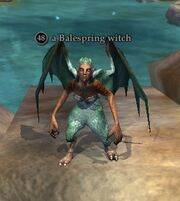 A Balespring witch