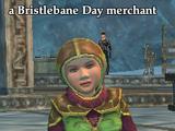 A Bristlebane Day merchant (Frostfang Sea)