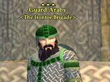 Guard Araby