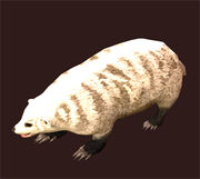 Arctic-badger