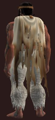 Cloak of the Grungetalon Champion worn