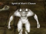 Spirit of Marr's Chosen