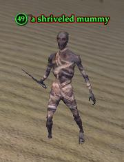 A shriveled mummy