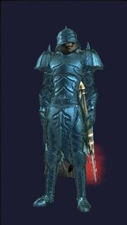 Champion of the Void (Equipped)